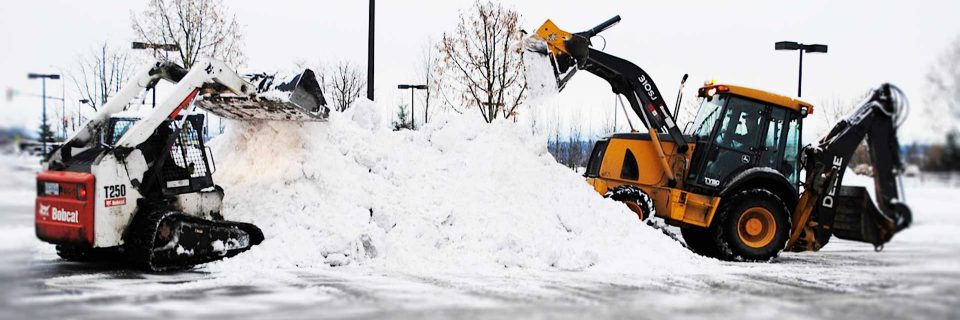 Full Time Professional 